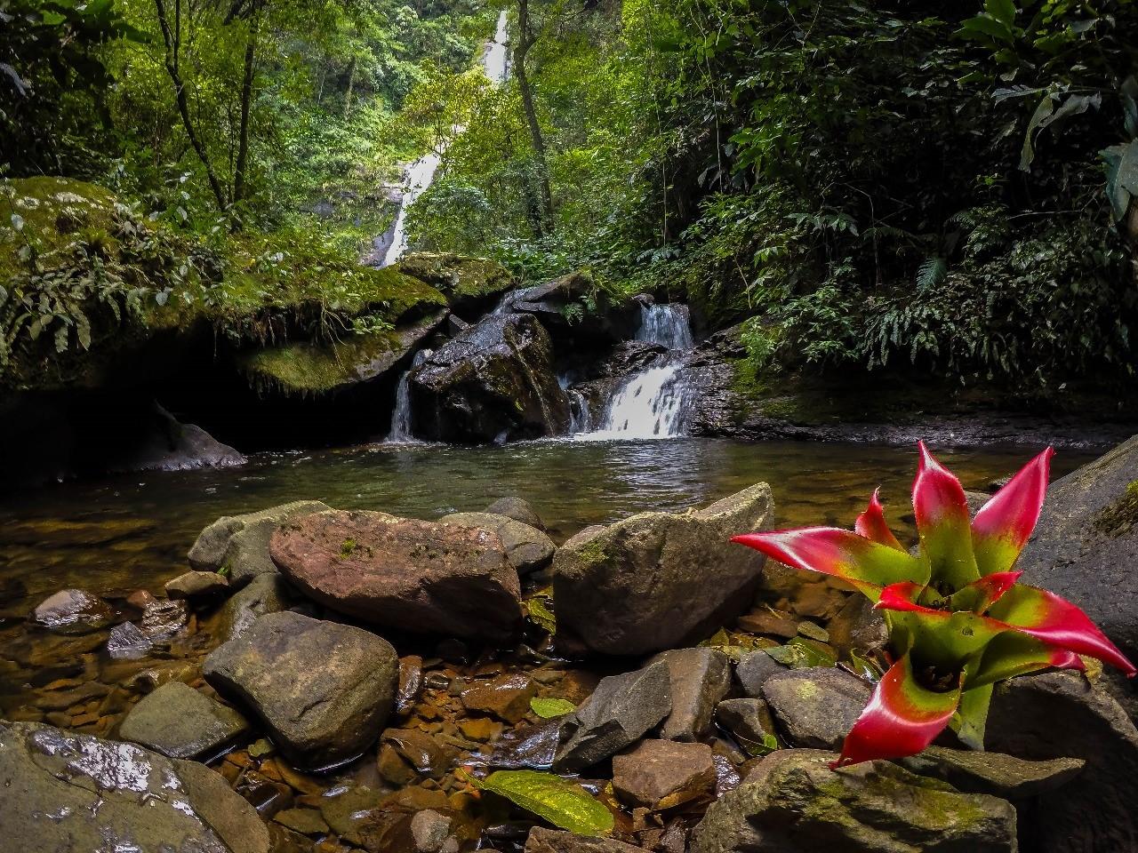 Trilha da Cachoeira da Clínica – Nova Veneza/SC